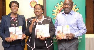 SPDC JV contributed $29 billion to Nigerian purse 2012–2016